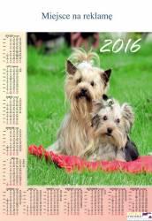 Kalendarz jednop.P13 SŁONECZNIKI BESKIDY